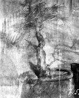 231119 Bestand-D-DAI-ROM-W.1195.jpg VI.7.23 Pompeii. W.1195. Wall painting of sacred tree, from south wall of cubiculum. Photo by Tatiana Warscher. Photo © Deutsches Archäologisches Institut, Abteilung Rom, Arkiv. See http://arachne.uni-koeln.de/item/marbilderbestand/231119