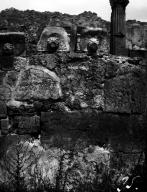 VI.7.20 Pompeii.W.1223. Lion water spouts displayed on north wall of atrium. Photo by Tatiana Warscher. Photo © Deutsches Archäologisches Institut, Abteilung Rom, Arkiv.
