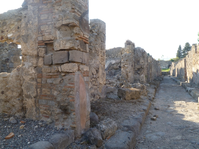 Vicolo di Modesto, May 2011. West side, from outside VI.2.29, looking north.
